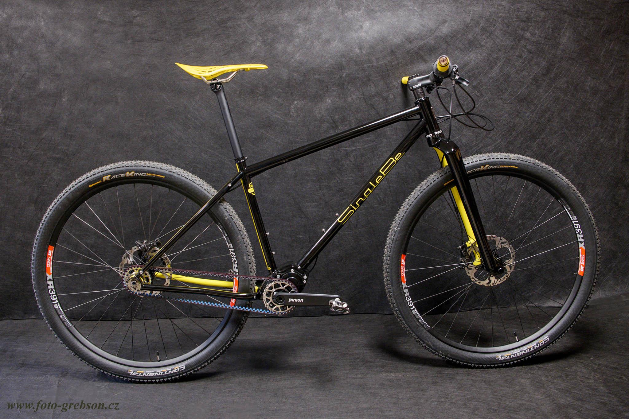 singlebe-custom-steel-bike-pinion-gearbo